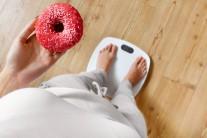 """""""굶는 다이어트는 이제 그만""""…'행그리'잠재우는 간식 봇물"""