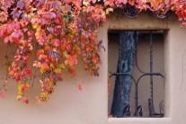 [양희관의 아름다운 세상] 산타 페(Santa Fe)의 가을 추..