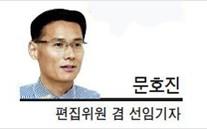 [데스크 칼럼] '정현 신드롬'의 승화