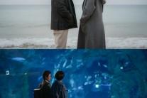 '키스 먼저' 감우성 김선아 사랑, 유독 응원 받는 이유