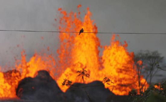 하와이 화산분출