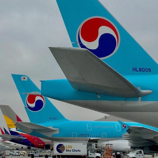 대한항공아시아나항공