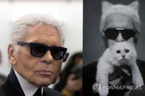 평생독신 '패션황제' 라거펠트의 유산 2억달러, 반려고양이 몫?