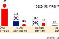 한국 디지털 개인 역량, 일본 절반 수준