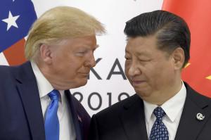 도널드 트럼프(왼쪽) 미국 대통령과 시진핑 중국 국가주석[AP=헤럴드경제]