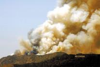 할리우드 인근 산불…워너브러더스 등 대피령