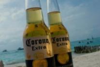 [이명애의 Brunch에서 삶을 묻다] 코로나를 이기는 슬기로운 음주생활, Cyber Cheers!!
